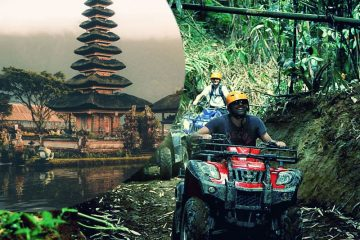 , ATV Quad Bike & Its Combination