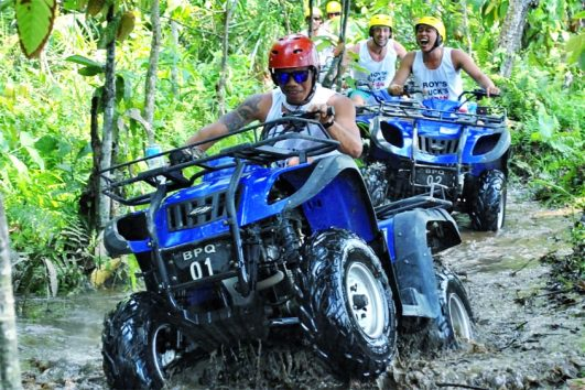 ATV Quad Bike & Its combination