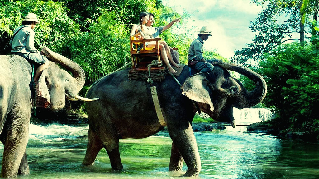 White Water Rafting with Elephant Rides