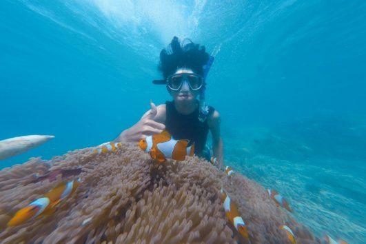 blue lagoon snorkeling tour