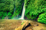 munduk waterfall Unique Explore Bali Tour Package